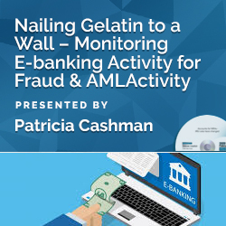 Nailing Gelatin to a Wall – Monitoring E-banking Activity for Fr