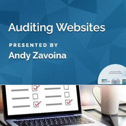 Auditing Websites