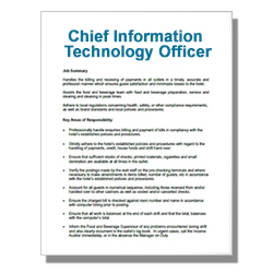 Chief Information Technology Officer