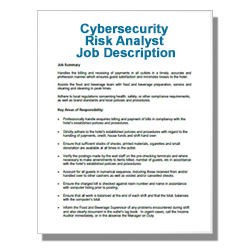 Cybersecurity Risk Analyst Job Description
