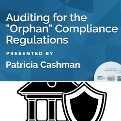 "Auditing for the ""Orphan"" Compliance Regulations"