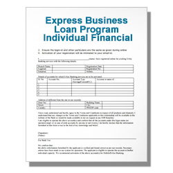 Express Business Loan Program Individual Financial Statement