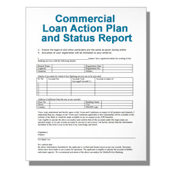 Commercial Loan Action Plan and Status Report