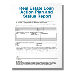 Real Estate Loan Action Plan and Status Report