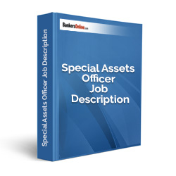 Special Assets Officer Job Description