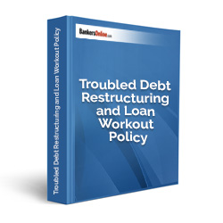 Troubled Debt Restructuring and Loan Workout Policy