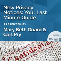 New Privacy Notices: Your Last Minute Guide