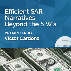 Efficient SAR Narratives: Beyond the 5 W's